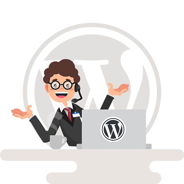 Ongoing WordPress Support
